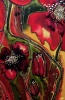 Silk Painting Three Lives of Poppies
